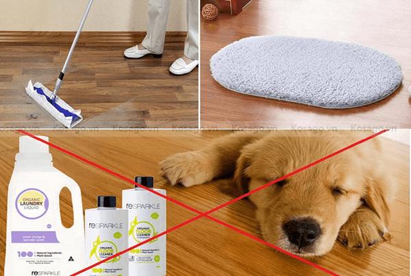 hướng dẫn vệ sinh sàn nhựa giả gỗ