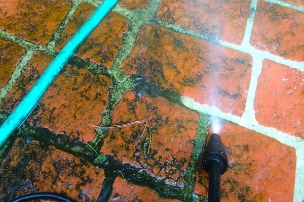cách tẩy sạch rêu trên nền gạch