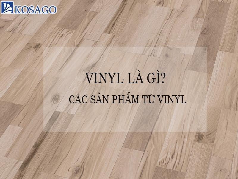Vinyl là gì? Các sản phẩm từ vinyl