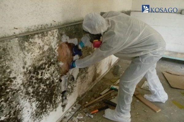 cách phòng chống thấm nước tường nhà